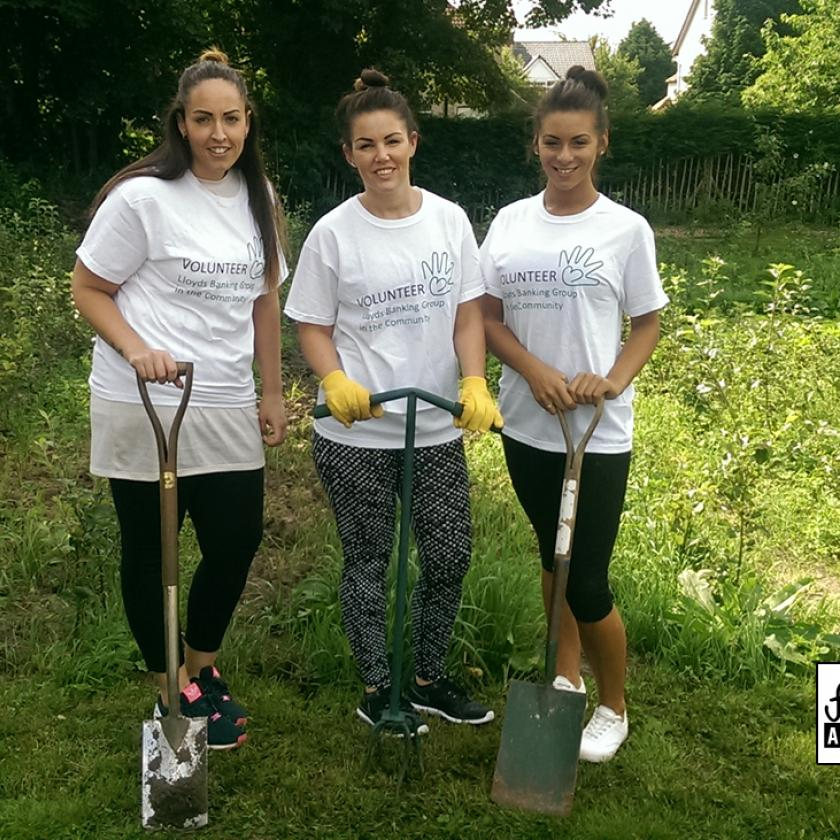 Lloyds Bank CSR Team Work on the Fruit Routes Lyndale Orchard